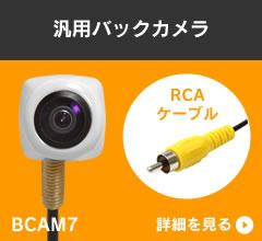 BCAM7